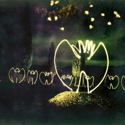 """Lichtengel, Polaroid 4x5"""""""